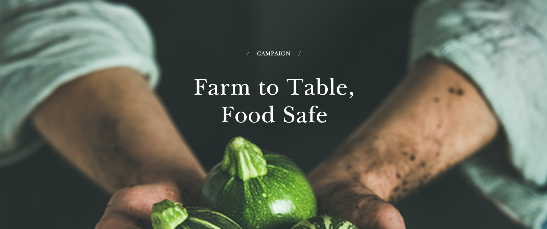 메인배너4-Farm to Table, Food Safe
