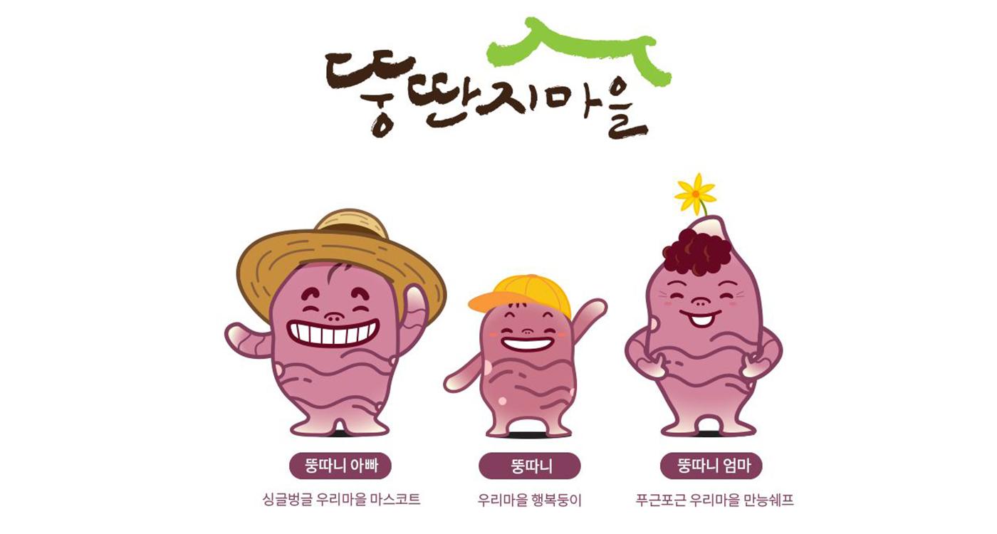 양평 자색 돼지감자 상세이미지4