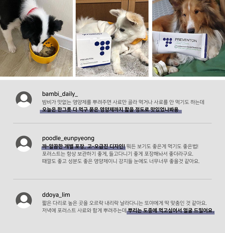 강아지 관절 케어 농축 파우더 곤충 영양제(한달분) 상세이미지12