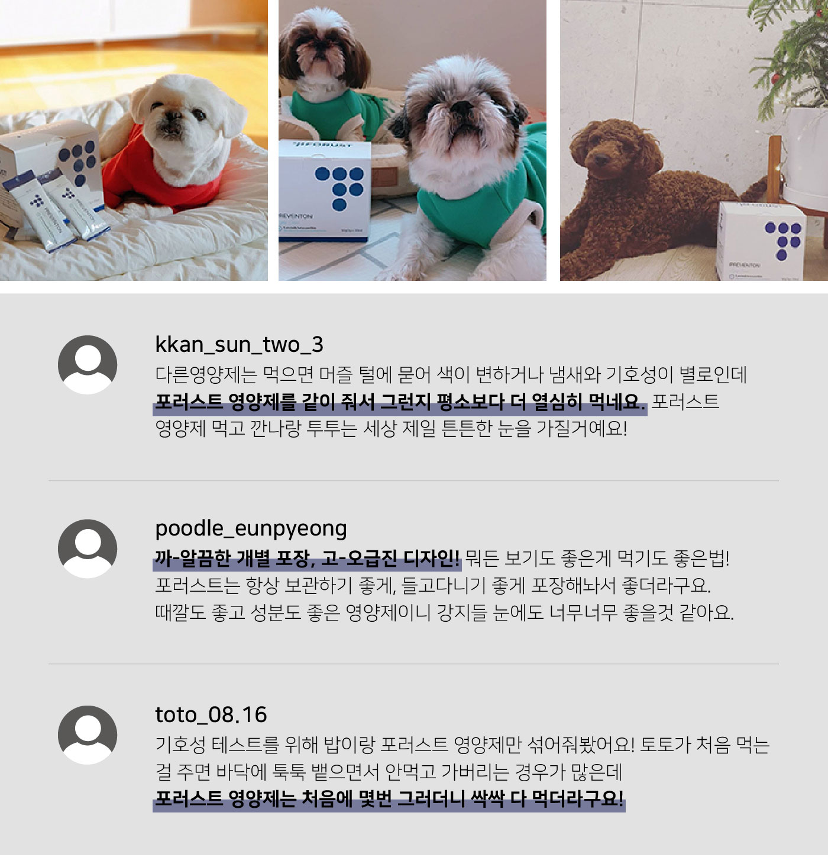 강아지 눈 케어 농축 파우더 곤충 영양제(한달분) 상세이미지12