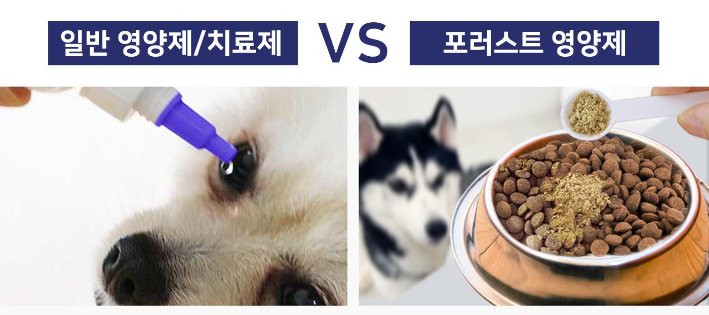 강아지 눈 케어 농축 파우더 곤충 영양제(한달분) 상세이미지3