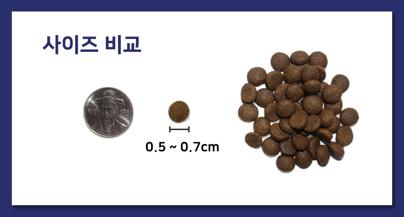 강아지 동애등에 곤충사료(200g*10ea) 상세이미지13