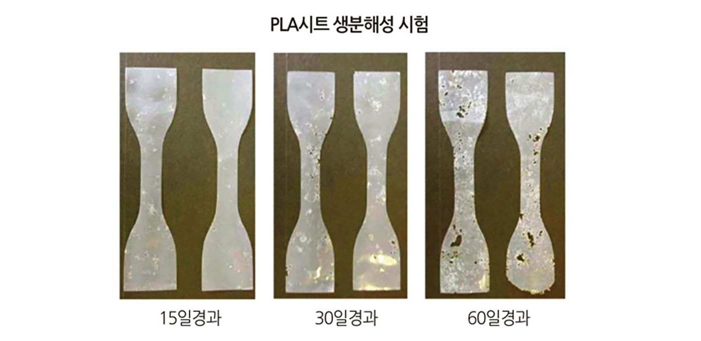 옥수수로 만든 생분해 일회용 아이스컵(50개) 상세이미지2