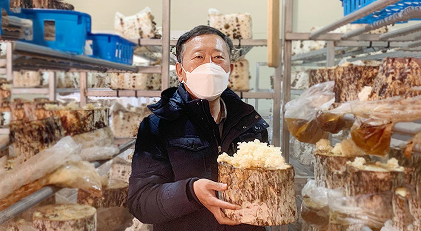 국산 건조 꽃송이버섯 상세이미지2
