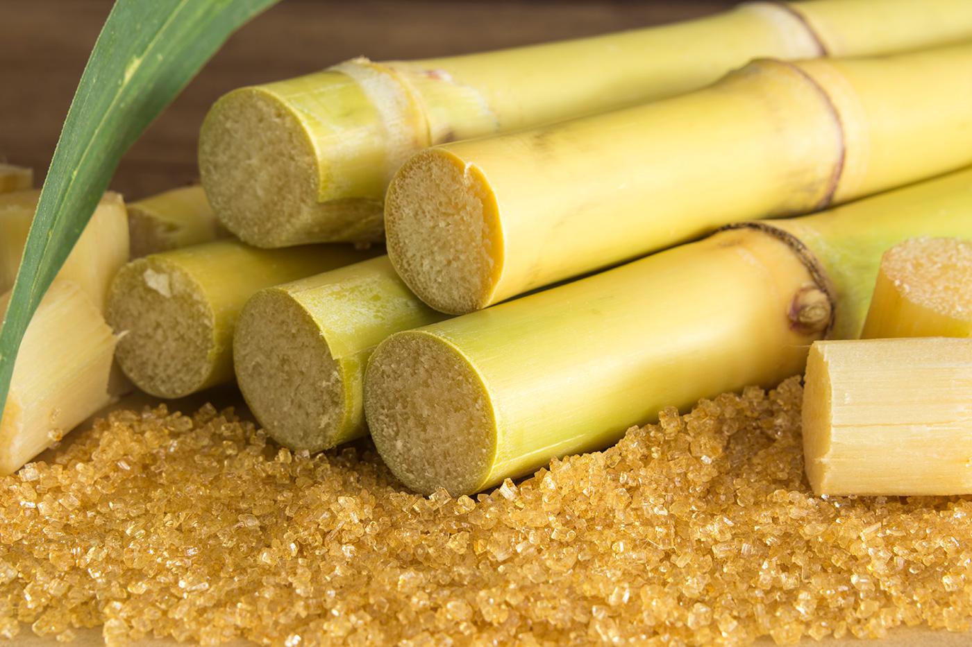 비정제 사탕수수 파라과이 설탕 유기농 원당(500g/1kg/5kg)/공정무역 유기농 비정제 설탕/사탕수수100% 화학처리NO/친환경 재배 상세이미지3
