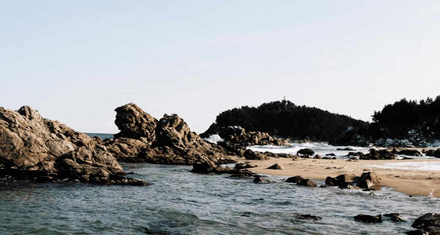 천연조미료 전통소금 함초자염 상세이미지 - 대안적인 생태공동체로서의 행복한 라이프