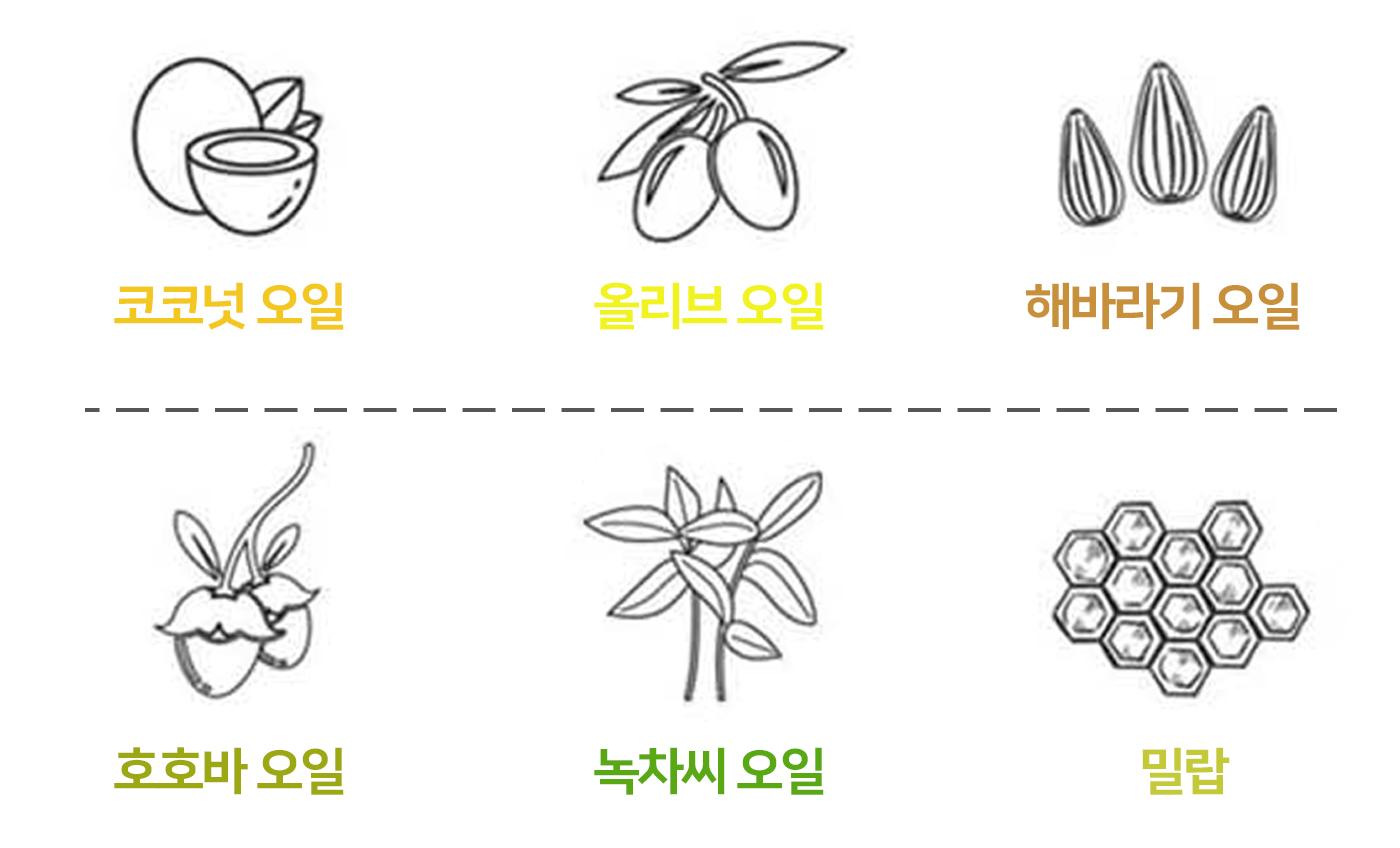 코코넛 천연 립크림 립밤스틱 5ml 상세이미지4